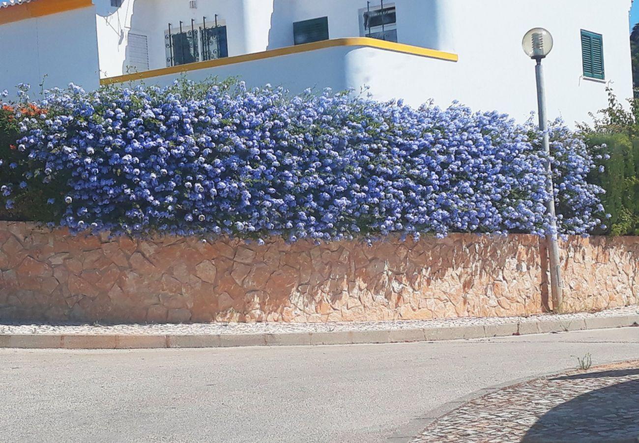 Villa in Luz - Casa Rosa Floresta (ML 7H)